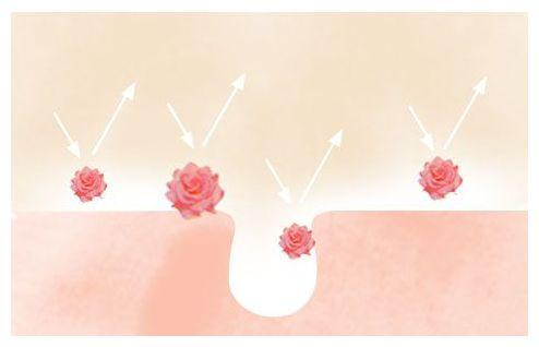 セフィーヌ シルクウェットパウダーファンデーションのお花形の粒子のイメージ図
