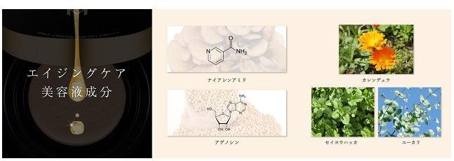 エイジングケア・美容成分の説明図