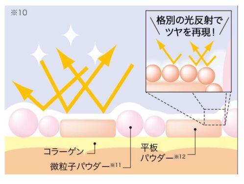 薬用クリアエステヴェール 粉の形